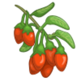 Play CityVille and Zynga will unlock Goji Berries in FarmVille