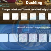 FarmVille Duck Pond and Ducklings suffering list of issues