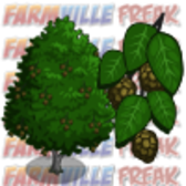FarmVille Sneak Peek: Red Alder and Sitka Spruce Trees Mastery