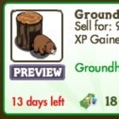 FarmVille: Celebrate Groundhog Day with a real Groundhog!