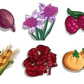 FarmVille Sneak Peek: Long Onions, Lilac Daffodils, Strapsberry, Purple Tomato and More