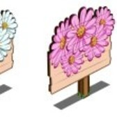 FarmVille Sneak Peek: White Aster & Pink Aster England Expansion crops