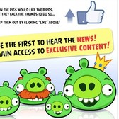 Angry Birds lands on Facebook in one month, Rovio gives more details