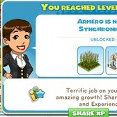 CityVille and Leveling Up: What's the point?