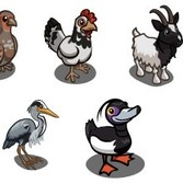 FarmVille English Countryside Sneak Peek: Shetland Pony, Sussex Chicken, Bagot Goat & much more