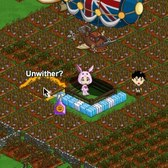 FarmVille: Neighbors' crops show as withered with new bug