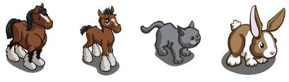Farmville Sneak Peek Shire Horse Shire Foal Short Hair