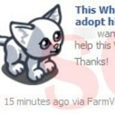 FarmVille Scam Alert: White Kitten News Feed posts are not real