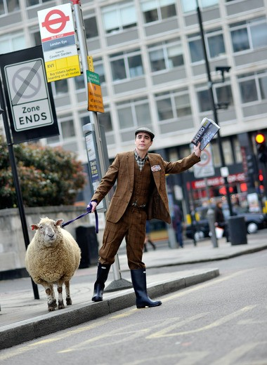 Sheep in London