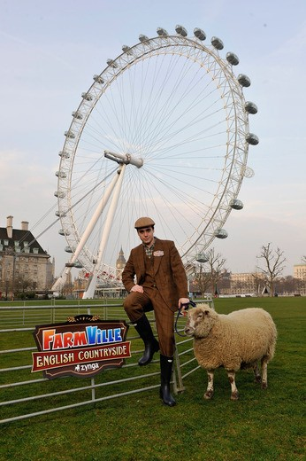 Sheep in London 2