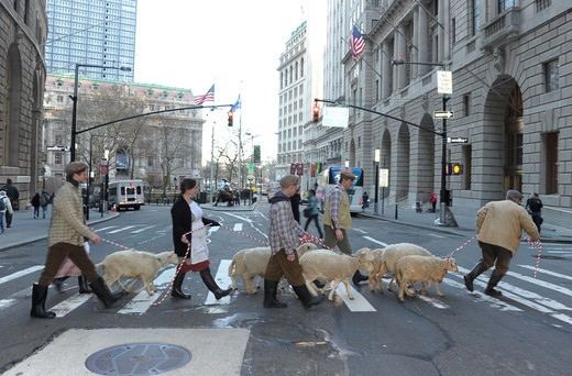 Sheep in NYC 2