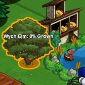 FarmVille Mystery Seedlings become Wych Elms; next stop Market?
