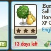 FarmVille LE English Countryside Trees: Cherry Plum & European Pear Trees