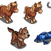 FarmVille Animal Sneak Peek: Red Kite, Red Deer, Baby Blue Tiger & More