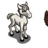 FarmVille Sneak Peek: White Thoroughbred, White Thoroughbred Foal, Modern Hen