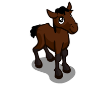 FarmVille Sneak Peek: Cleveland Bay Horse, Juniper, European Beech Trees