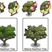 FarmVille Sneak Peek: Hawthorn Trees and Misty Lake mist-ify farmers