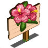 Pink Hibiscus Mastery