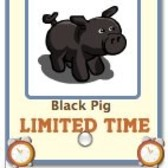 FarmVille: Send a Black Pig free gift for a limited time
