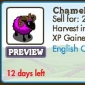 FarmVille Sheep Breeding: Chameleon Ram offer