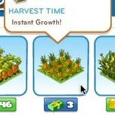 CityVille: Grow Pineapples to give your city a tropical touch