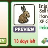 FarmVille Irish Animals: Connemara Pony and Irish Hare