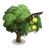 FarmVille Sneak Peek: Service Tree and Wild Service Tree