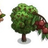 FarmVille: Giant Boom and Wild Service Trees appearing fro