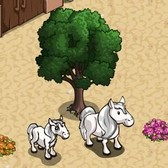 FarmVille: Formerly iOS exclusive Silver Pony now available to all players