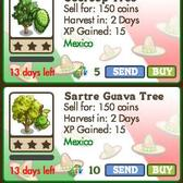 FarmVille: Sartre Guava and Soursop Trees continue the Mexican theme