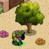 FarmVille Vineyard Animals: Add a Vineyard Sheep to your collection