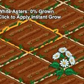 FarmVille White Aster crop available to plant for one week only