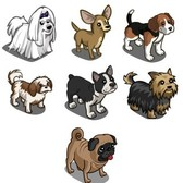 FarmVille Mystery Game (08/28/11): Toy Dogs are the perfect accessory for your farm