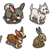 FarmVille: Pet Run Habitat animals re-released in the store