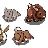 FarmVille: Re-released bunnies hop back into the store