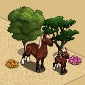 FarmVille Vineyard Animals: American Quarter Horse and Mule Deer
