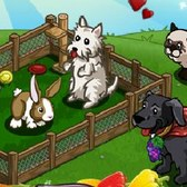 FarmVille Pet Run Goals: Everything you need to know
