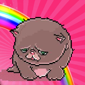 Techno Kitten Adventure brings the ultimate Internet meme to Facebook