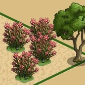 FarmVille Animal Sanctuary Items: Acacia Tree, Red Kangaroo, Safari Tent and more