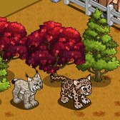 FarmVille Animal Sanctuary & Lighthouse Cove Animals: Canada Lynx, Morgan Stallion and more