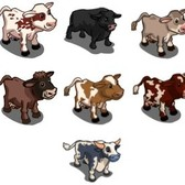 FarmVille Mystery Game (09/25/11): Dairy animals take the spotlight