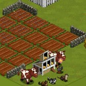 FarmVille Lighthouse Cove Crops: Everything you need to know