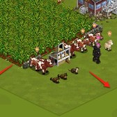 FarmVille Lighthouse Cove: Oceanside Farm land expansion now available for coins