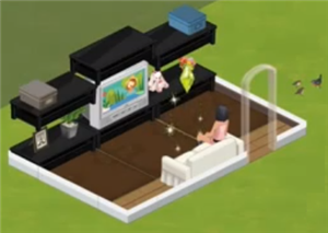 Sims Social Entertainment Center