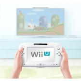 Nintendo's Wii U is for 'a different consumer,' as in a wealthier one?