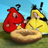 Hey, Rovio, you missed one: Angry Birds lands on Samsung's Wave 3