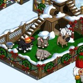 FarmVille Winter Pet Run: Everything you need to know