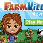 FarmVille survey hints at auctions, swap meets and more