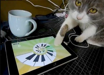 Iggy cat playing iPad