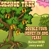 Pioneer Trail Horseshoe Tree: Double your money in a year